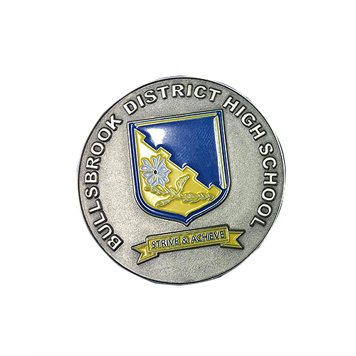 School Pin