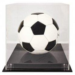 Acrylic Display Case Round Ball